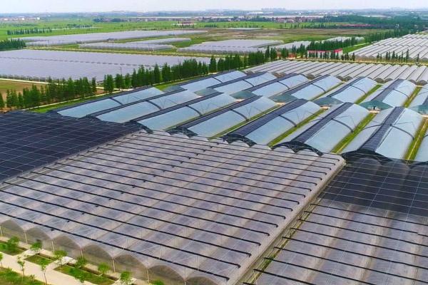 市政公用生态农业示范园南新生态园工程600400PX.jpg